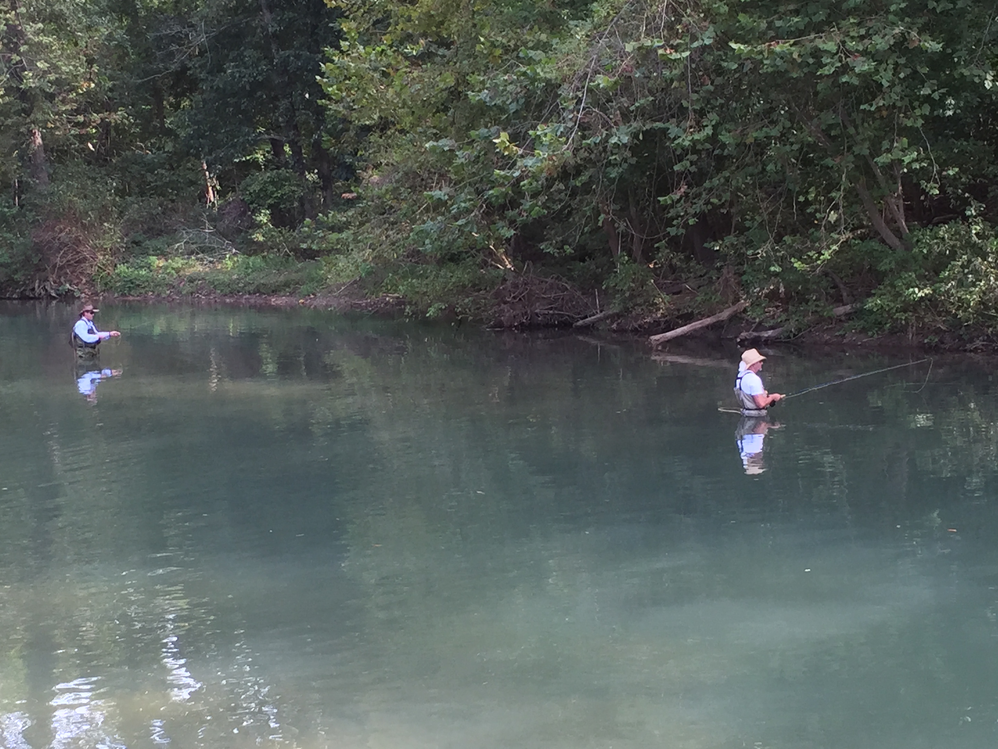Fishing on the Roaring River in the Ozarks – Missouri