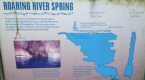 Roaring River State Park Fishing Hours