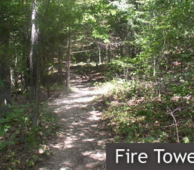 Fire Tower Trail